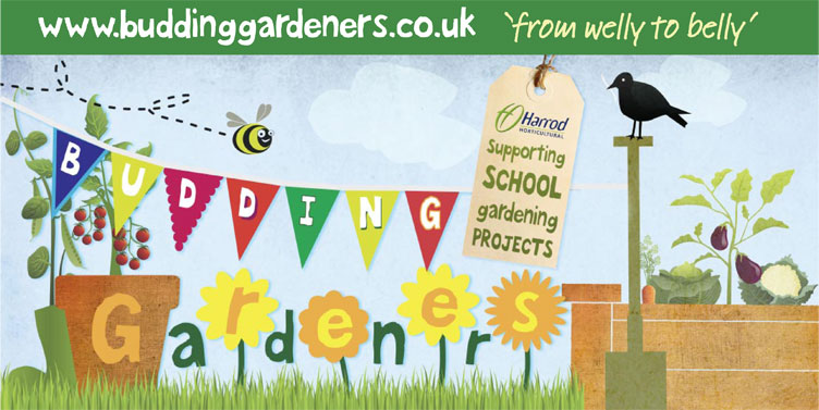 Budding Gardeners - supporting school garden projects