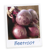 Know your Veg - Beetroot