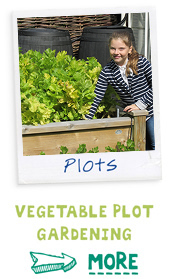 Vegtable Plot Gardening - Find out more
