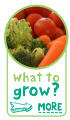 What to Grow - Click here to find out more